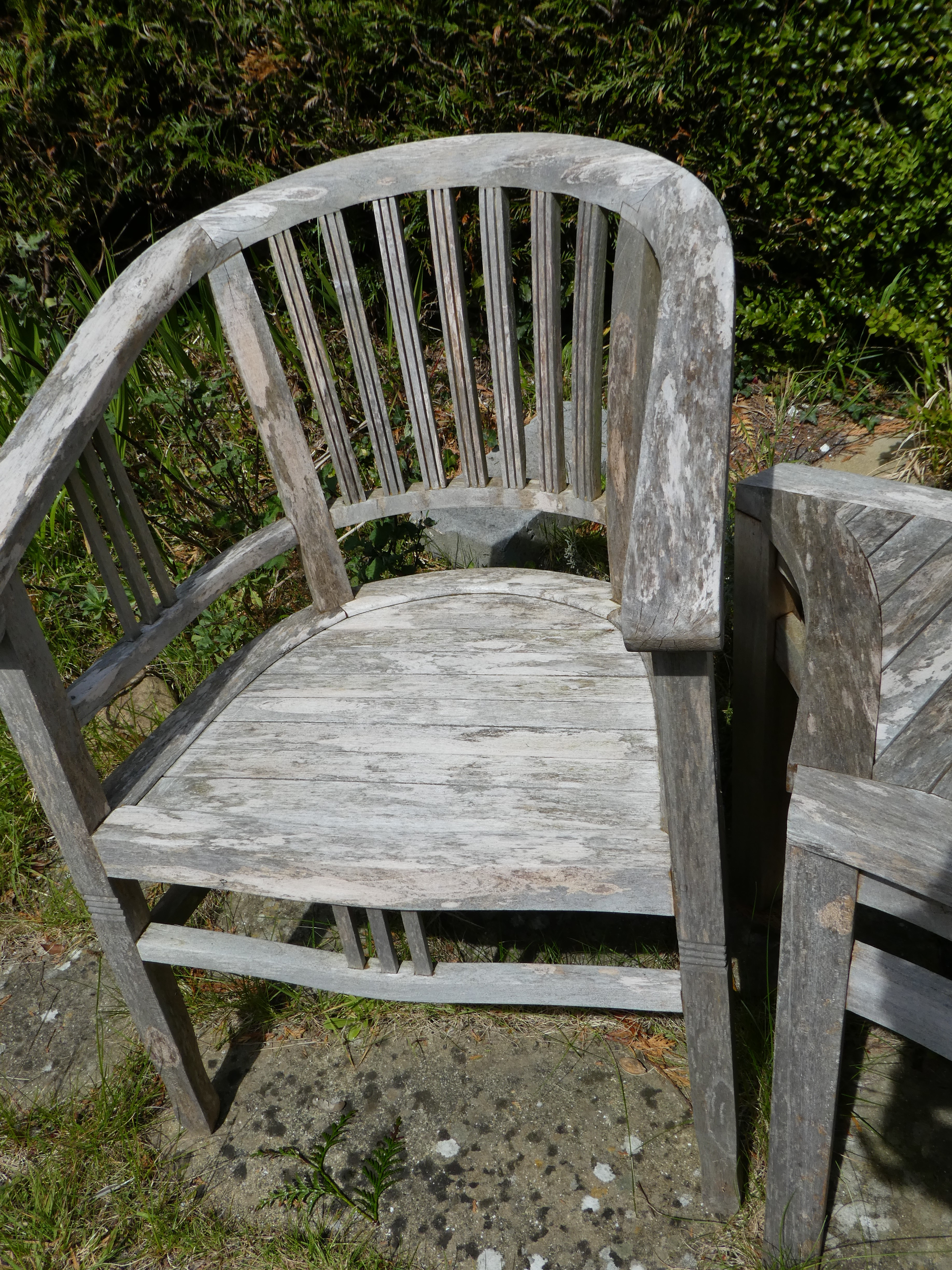 Gentil Garden Chairs Damaged By Wasps (Left Teak Chair And Right Unknown Wood