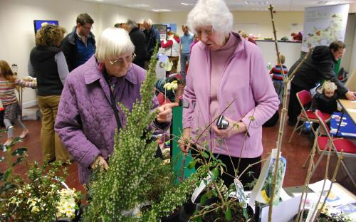 People Looking at the wildlife friendly plants