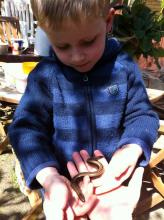 Jake with slow worm